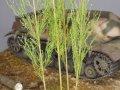 彩葉[MS-009]穂の出た植物セット
