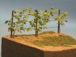 画像1: 紙創り[A-11]ブドウの葉