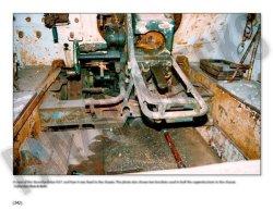 画像2: Combat History of Sturmpanzer-Abteilung 217