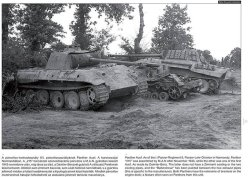 画像2: PeKo Publishing[PKO-2355]World War Two Photobook Series No. 6 Panther on the Battlefield