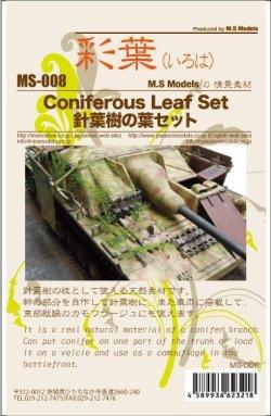 画像4: 彩葉[MS-008]針葉樹の葉セット