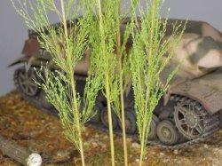 画像1: 彩葉[MS-009]穂の出た植物セット