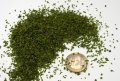 JOEFIX[JF116]小さい緑の葉