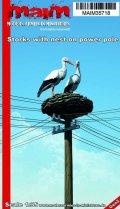 マイム[MAIM35718]Storks with nest on power pole / 1:35