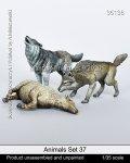 マンティス・ミニチュアズ[Man35138]1/35 動物セット37 獲物を仕留めた狼の番い