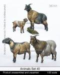 マンティス・ミニチュアズ[Man35141]1/35 動物セット40 山羊の群れセット