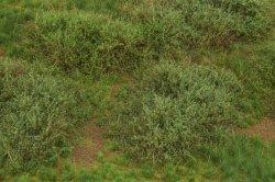 画像3: マーティンウェルバーグ[WB-M042]マットタイプ(ヤブ) 全高2mm~30mm 夏 パウダー付き  21cmx30cm