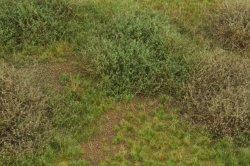 画像3: マーティンウェルバーグ[WB-M043]マットタイプ(ヤブ) 全高2mm~30mm 晩夏 パウダー付き  21cmx30cm