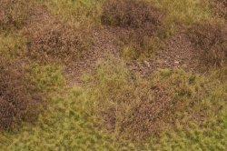 画像3: マーティンウェルバーグ[WB-M056]マットタイプ(草原) 全高2mm~12mm 初冬 パウダー付き  21cmx30cm
