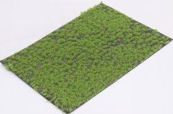 画像1: マーティンウェルバーグ[WB-P201]草地 春 全高2mm