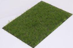 画像1: マーティンウェルバーグ[WB-P602]草地 夏 全高6mm