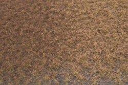 画像2: マーティンウェルバーグ[WB-PW206]草地(パウダー付き) 冬 全高2mm