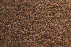 画像3: マーティンウェルバーグ[WB-PW206]草地(パウダー付き) 冬 全高2mm