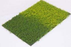 画像1: マーティンウェルバーグ[WB-PW601]草地(パウダー付き) 春 全高6mm