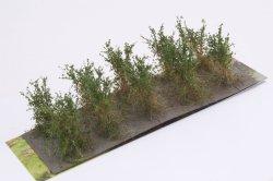 画像2: マーティンウェルバーグ[WB-SBDG]茂みB 株タイプ 全高40mm ダークグリーン 10株