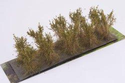 画像2: マーティンウェルバーグ[WB-SBOL]茂みB 株タイプ 全高40mm オリーブグリーン 10株