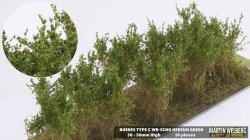 画像1: マーティンウェルバーグ[WB-SCMG]茂みC 株タイプ 全高40mm ミディアムグリーン 10株