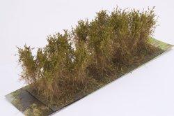 画像2: マーティンウェルバーグ[WB-SCOL]茂みC 株タイプ 全高40mm オリーブグリーン 10株