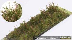画像1: マーティンウェルバーグ[WB-SDR]茂みD 株タイプ 全高20mm レッド 10株