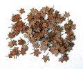 PlusModel[4034]1/48カエデの葉(枯葉)