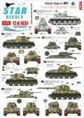 STAR DECALS[SD72-A1031]1/72 WWIIのフィンランド戦車#3