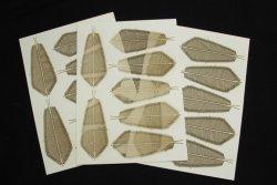 画像2: 紙創り[A-38]ココヤシII