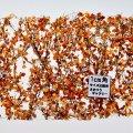ミニネイチャー[910-34]白樺の枝葉(1:45+)-深まる秋